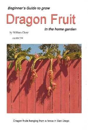Growing dragon fruit from vine cuttings, grow pitaya, grow pitahaya, jungle cactus, book