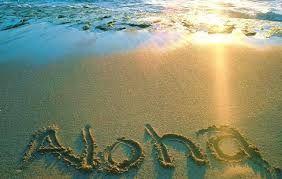 「hawaii 砂浜」の画像検索結果