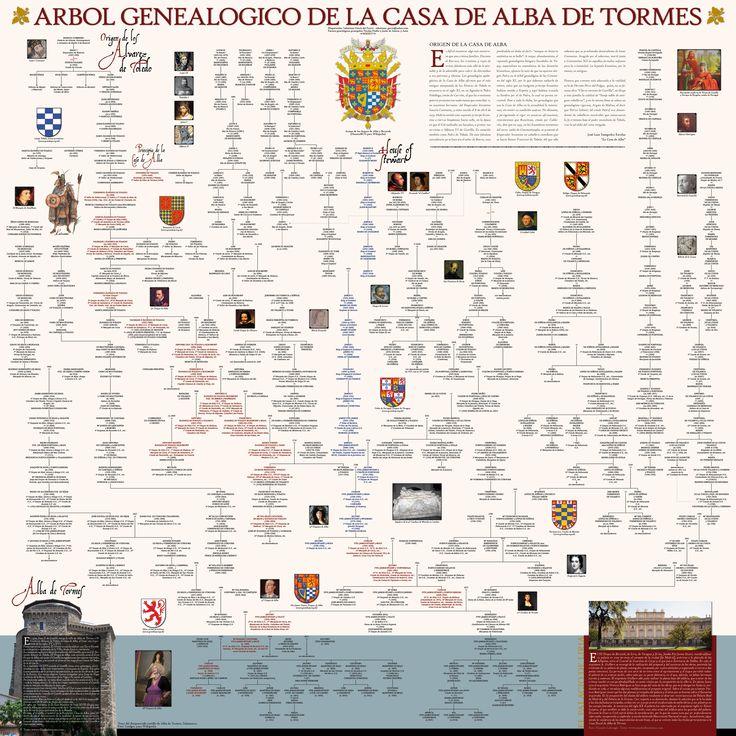 299 best genealogy images on pinterest royalty families and history genealoga de la casa ducal de alba fandeluxe Choice Image
