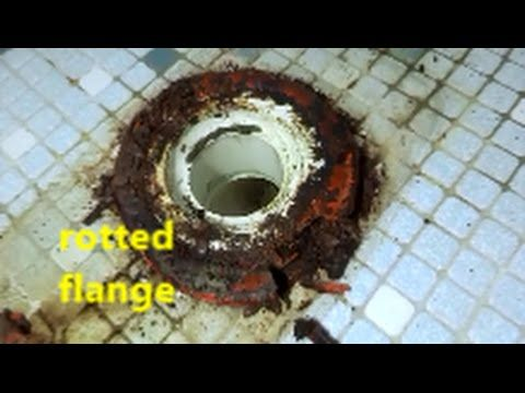 rotted toilet flange repaired , new toilet installed