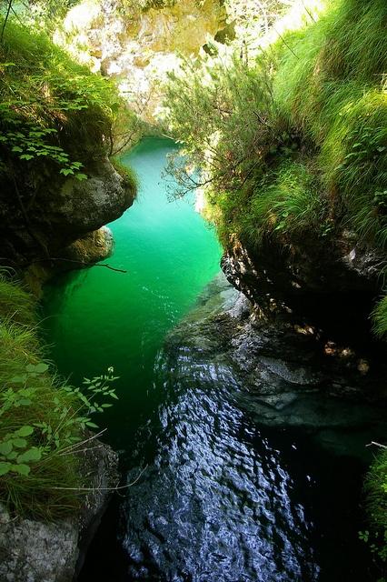 Clear water at Lago del Mis by Mrs Butterbur, via Flick      #belluno #nature #lake #wild