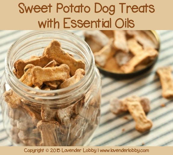 These treats are simply a much better option for your little (or big) furbaby than store bought. You will be amazed at how easy it is to make your own gourmet treats. The whole process from start t…