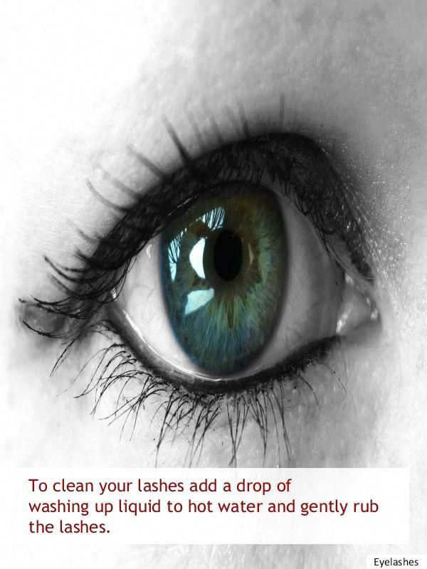 Long Lashes Heated Eyelash Curler Eyebrow Grooming 20190127 My