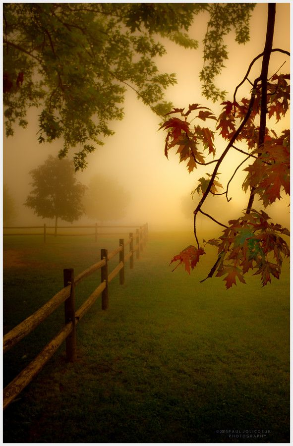 54 best beautiful scenery images on pinterest country life morning at the park by paul jolicoeur fall fence fog fandeluxe Choice Image