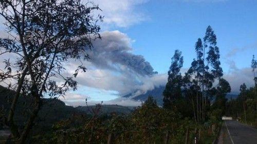 Активисты спасают брошенных из-за вулкана животных. На протяжении трех недель не перестает падать вулканический пепел на города и населенный пункты, расположенные в западном направлении от вулкана Котопахи, который начал «просыпаться» в Эквад...