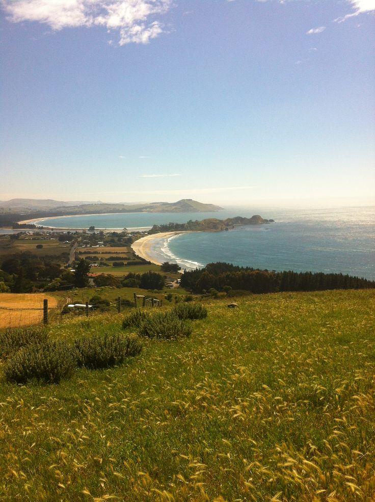 Karitane, Otago, New Zealand