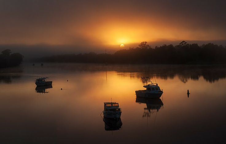 Misty Morning, Moruya River, NSW. AUS