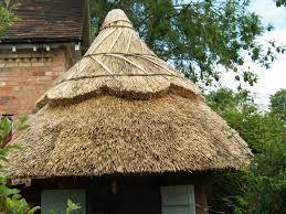 thatched roof - Google zoeken