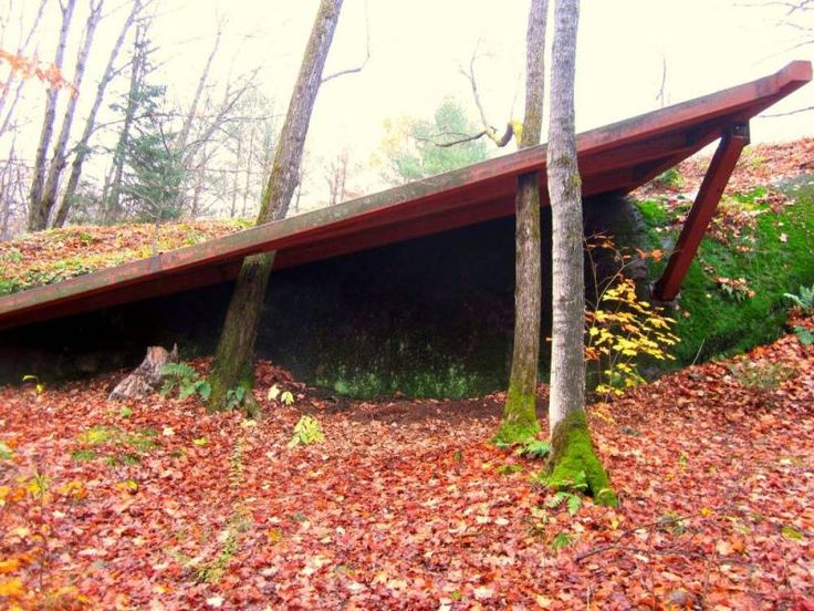 Tree Museum, Gravenhurst, Ontario