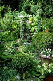 Inger blev i sommeren 2002 interviewet af Søs Kjeldsen til TV2 Østjylland´s udsendelse om `Den skønneste have`, hvor vi var finalister...