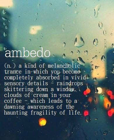 Ambedo ~ (n.) a kind of melancholic trance in which you become completely absorbed in vivid sensory details — raindrops skittering down a window, clouds of cream swirling in your coffee — which leads to a dawning awareness of the haunting fragility of life.
