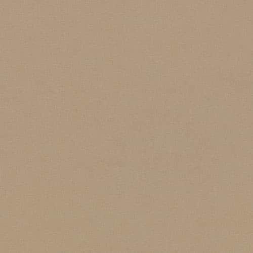 "Daltile PN624P Plaza Nova - 24"" x 6"" Rectangle Multi-Surface Tile - Unpolished C (brown vision)"