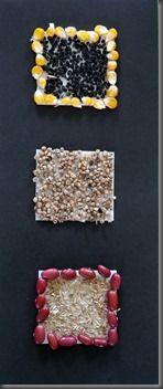 mosaique de graine