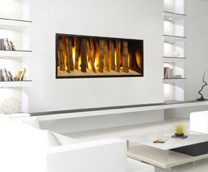 15 best Valor Fireplaces - L1 Linear Series 2-Sided images on ...