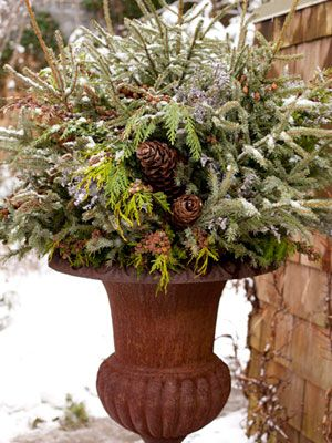 Winter urn: Midwest Living, Christmas Decor Ideas, Winter Arrangements, Winter Urn, Cheer Winter, Pine Cones, Front Porches, Outdoor Arrangements,  Flowerpot