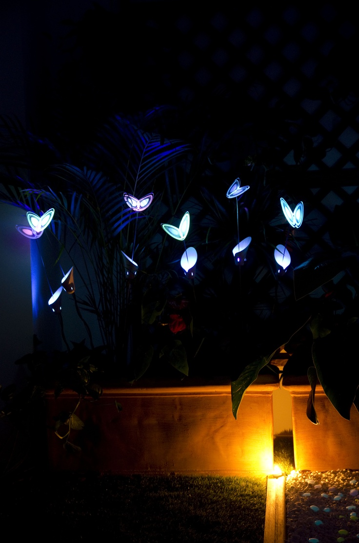 The Avatar Garden - Photoluminescent Butterfly