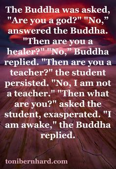 Buddha quotes on Pinterest | 583 Pins