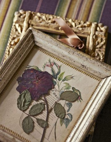 pressed flowers presented in antique picture frames.