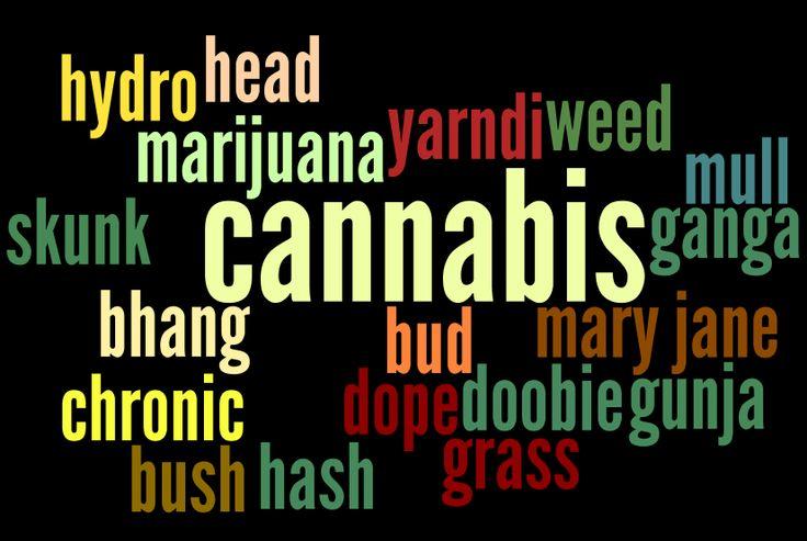 Cannabis - marijuana - drug facts - drug info @ your library