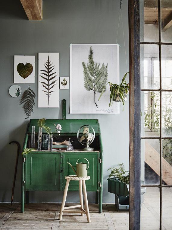 Botanicals on Display