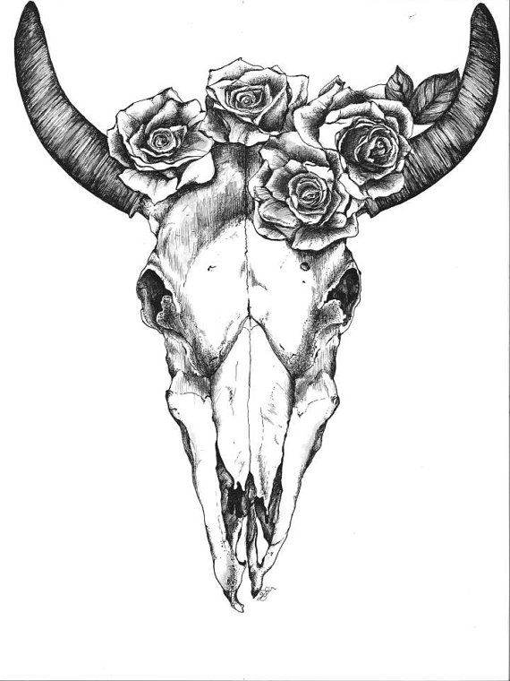 Bull Skull with Roses by quinndelahanty on Etsy, $35.00