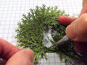 Evergreen Wreath Tutorial - Splitcoaststampers