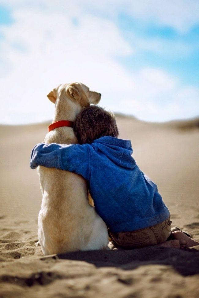 Lo más probable es que después de esto quieras adoptar un nuevo amigo de cuatro patas para tu hijo
