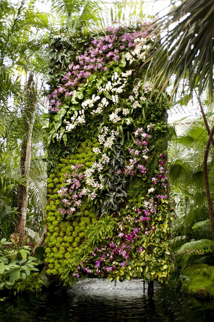 would recreate this vertical orchid & greenery wall for one of our weddings in capri if I had to cover up an unattractive wall in location space