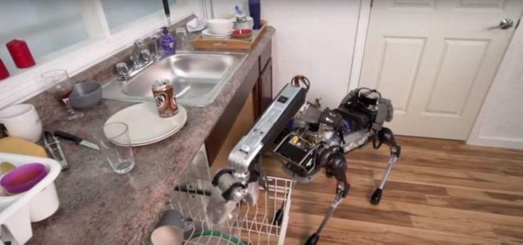 Dishwashing Quadriped Robots : household robot