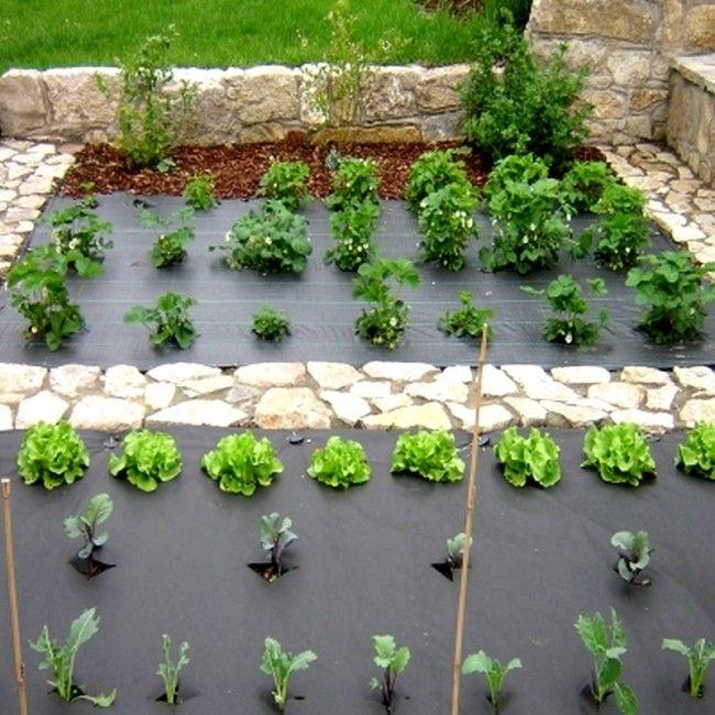 113 best produits pour le verger potager jardin conseiller images on pinterest vegetable. Black Bedroom Furniture Sets. Home Design Ideas