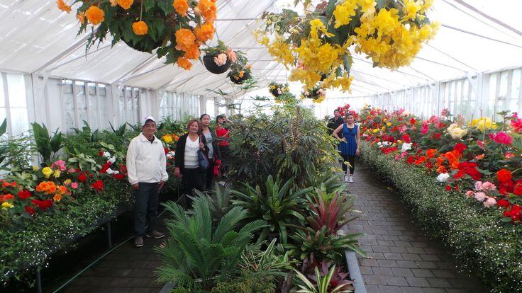 Oamaru Garden