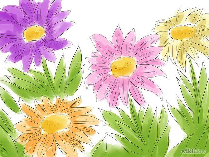 Pelitre Si en tu jardín crecen margaritas, tienes el ingrediente principal para un insecticida. La piretrina (margarita piretro) se ha utilizado en insecticidas comerciales durante años. Elige las margaritas cuando estén en plena floración. Cuélgalas para que se sequen en un lugar oscuro y seco. Pulveriza las flores en una licuadora o en un mortero. El insecticida será más eficaz cuanto más fino sean pulverizados sus ingredientes.