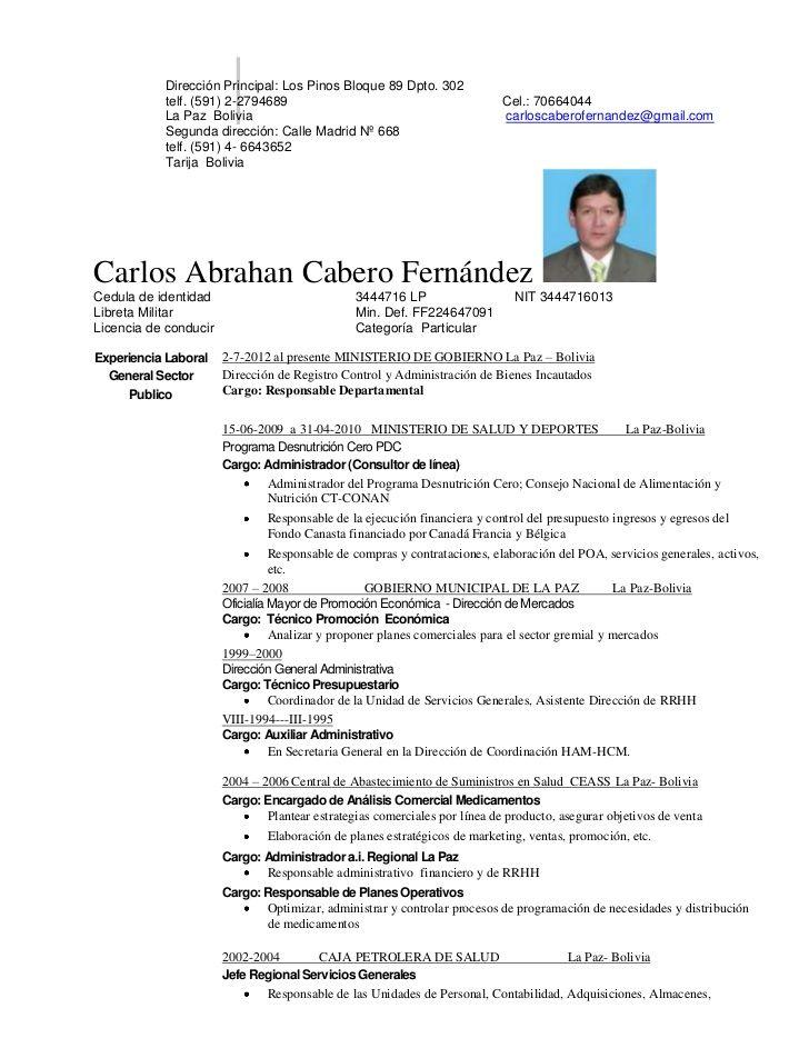 Bolivia 2017 Plantilla De Curriculum Vitae Pinterest