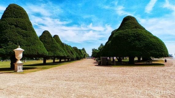 The Majesty of the Gardens at Hampton Court Palace.  Beautifully manicured English garden.