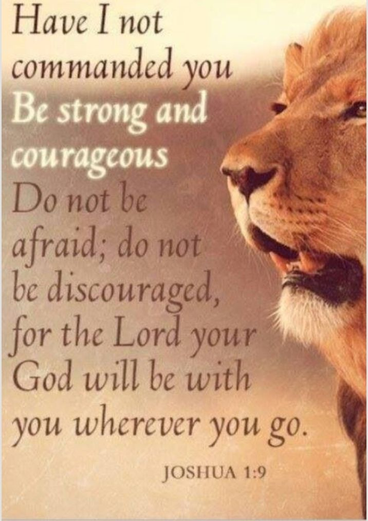 I shall not be discouraged and see myself as GOD sees me. Imperfectly perfect through Jesus.