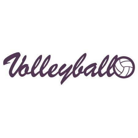 Volleyball essay titles