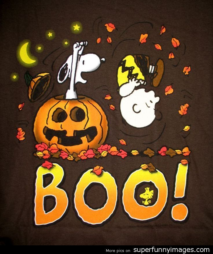 55 best images about charlie brown great pumpkin on - Snoopy halloween images ...