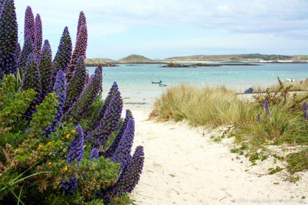 Beach on Tresco, Isles of Scilly