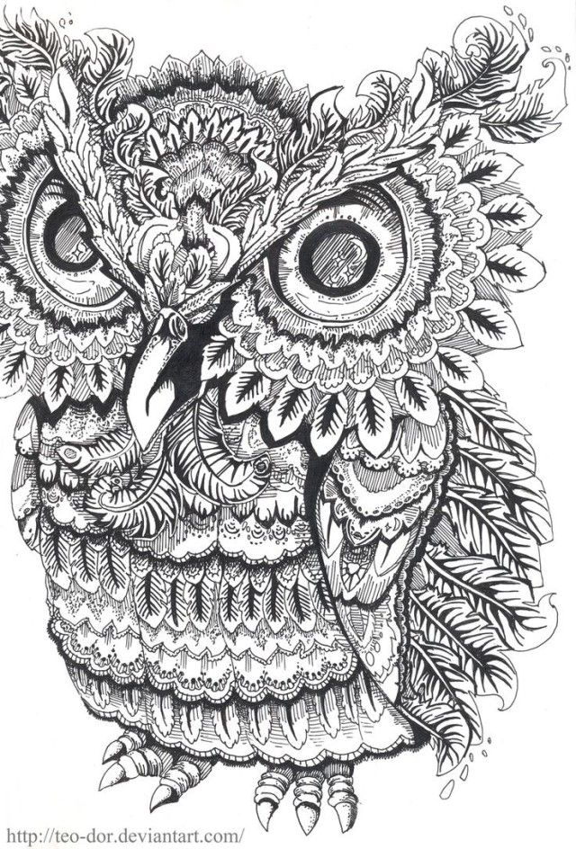 689 best Well, Owl Be! images on Pinterest Barn owls, Drawings of - copy baby owl coloring pages for adults