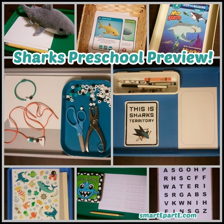 Sharks preschool preview! We're studying all things Sharks this week to celebrate San Jose's berth in the NHL Stanley Cup Final!