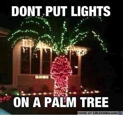 Dear St. Peter, about those Christmas lights... http://kimdalferes.com/2858/kim-dalferes-blog/dear-st-peter-about-those-christmas-lights