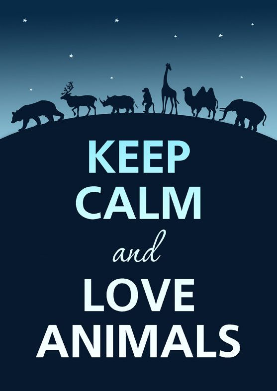 ...  Love Animals