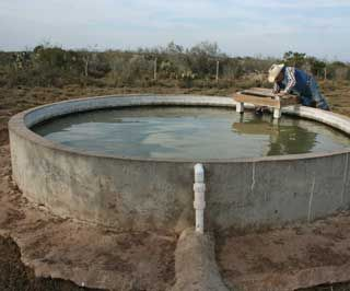 Best 25 Cattle Trough Ideas On Pinterest Cattle Water Trough Line Install And Bathtub Cost