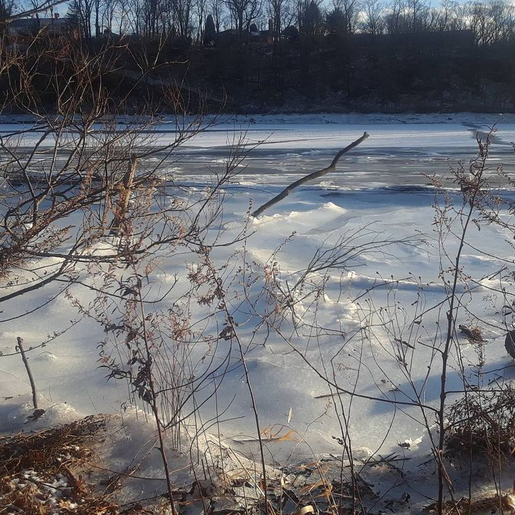 Day 1 2018. #RaritanRiver #winterscape. Thus spot was fully melted and actually bubbling just two days ago. We are trying to figure out if it is swamp gas or a leak in a natural gas pipe but after last night's full moon high tide flood the water retreated and left a sheet of ice over the drained riverbank. The investigation will continue... #nature #river #water #WaterIsLife #WaterProtectors #EarthProtector #Raritan #HighlandPark #NJ #frozen #WaterProtector #naturelove #WinterWalk #subzero…