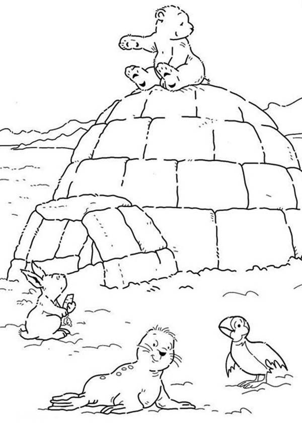 lars the little polar bear sitting on an igloo coloring pages baby stuff polar bear the. Black Bedroom Furniture Sets. Home Design Ideas