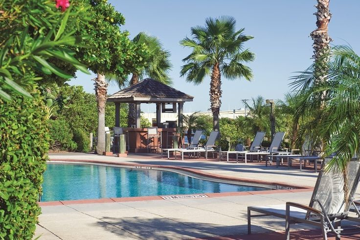 Clear blue sky, palm trees, and refreshing water are waiting for you at Grand Hyatt Tampa Bay.