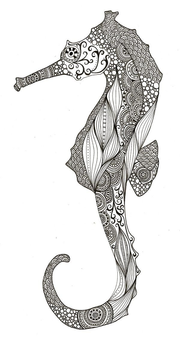 Black And White Seahorse ink Art seahorse Illustration