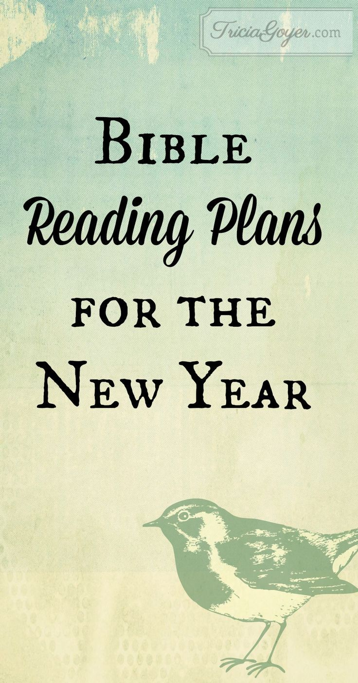 Bible Reading Plans for the New Year   Bible Study   Pinterest ...