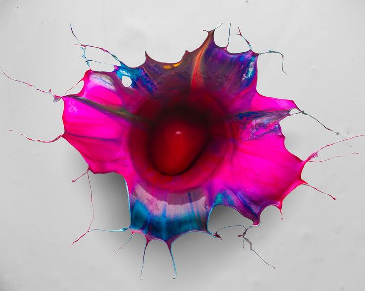 Orchid   Fabian Oefner - modeling paint by natural forces. A tank was filled with several layers of different colors of liquid paint with the top layer being either black or white. Then, a sphere was thrown into the paint. As the falling object splashed into the tank, the paint was forced upwards, shaping the individual layers of paint into a blossom-like structure.