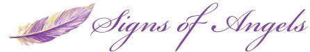The Shopping Cart : Signs of Angels, Your Angel Resource - Learn, Shop and Readings